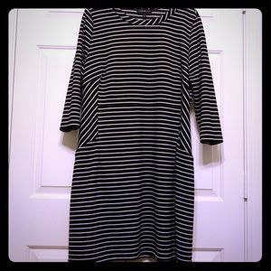 Lane Bryant. Knit dress with front pockets. 14/16